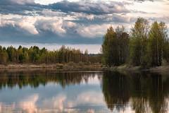Река Малошуйка (vikkay) Tags: малошуйка река вода лес небо вечер берег пейзаж облака отражение