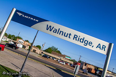 Walnut Ridge Station | Walnut Ridge, Arkansas (M.J. Scanlon) Tags: 2018 amtrak arkansas business canon capture cargo color commerce depot digital eos engine freight hwy67 haul highway67 horsepower image impression ironmountain landscape locomotive logistics mjscanlon mjscanlonphotography mp may merchandise missouripacific mopac mojo move mover moving music outdoor outdoors perspective photo photograph photographer photography picture power rail railfan railfanning railroad railroader railway real rockandroll rockabilly scanlon sky station steelwheels super track train trains transport transportation tree view walnutridge walnutridgedepot wow ©mjscanlon ©mjscanlonphotography