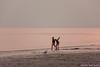 Vliegles (wardkeijzer_107) Tags: kinderen children strand beach sand zand sundown sunset sky zonsondergang rood lucht red seagull meeuw