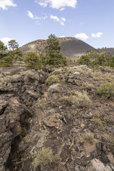 SedonaVacation_May2018-3208 (RobBixbyPhotography) Tags: arizona flagstaff sedona sunsetcrater vacation nationalmonument volcano travel