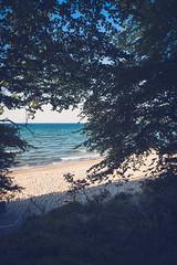 _DSC4751 (Joschka_van_der_Lucht) Tags: balticsee meer ostsee see sommer strand beach sand summer sun tree warnemünde rostock mecklenburgvorpommern deutschland de