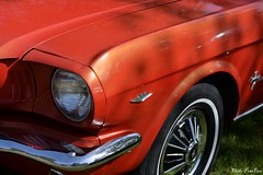 Mustang (pontfire) Tags: auto moto rétro rouen 2017 musclecars pontifre ponycars americancars americanmusclecars automotorétrorouen 2018 car cars autos automobili automobile automobiles voiture voitures coche coches carro carros wagen pontfire classic old antique oldtimer vieille collection ancienne bil αυτοκίνητο 車 автомобиль worldcars