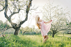 A stroll in the garden (DZ-fotografia (8.3 Million views, Thx!)) Tags: pink dress sexy lady woman parasol lace long blonde hair apple blossom garden
