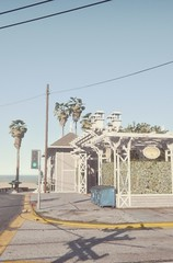 Beach | GTA V (Stellasin) Tags: angeles gaming game beauty beautiful buildings blur car cars city clouds downtown engine weather reflection people flare fog graphics gtav gta grass hot highway photography sky los mods mountains motion road trees screenshot sun sunrise v water