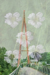 The bridge between reality and a dream (Mari Van Cauteren) Tags: beernem doubleexposure bridge flowers colors green
