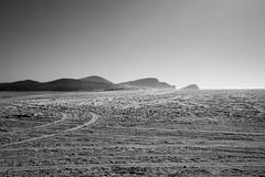 The Expansive Dune 2 (HaskelR) Tags: dune expansive sand detail landscape nature hills smiths lake contrast vast monochrome area large