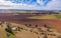 166 Settlement Bridge Road, Canowindra NSW