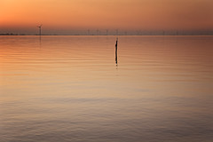Solitary Pole Against A Lot Of Windmills (Alfred Grupstra) Tags: nature sunset water sea sky dusk reflection lake landscape sunlight outdoors tranquilscene sun sunrisedawn silhouette beach summer morning dawn scenics 974 ijsselmeer