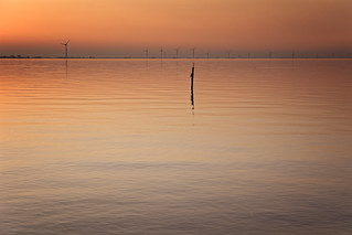 Solitary Pole Against A Lot Of Windmills