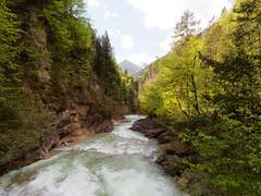 Brandenberger Ache (hugoholunder) Tags: berge bäume flus kramsach tirol
