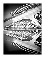 En las fauces / In the jaws. (ximo rosell) Tags: ximorosell bn blackandwhite blancoynegro bw buildings arquitectura architecture abstract abstracció valencia composició calatrava ciudaddelasciencias llum luz light spain