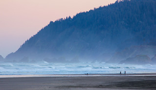 The Wild Oregon Coastline