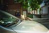 (ニノ Nino) Tags: kodak color plus 200 cat cats kitty kittens gate feline stray urban street photography