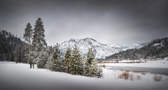 Not a Black and White Photo... (brian.pipe) Tags: nikon d500 sigma 17 50 squaw valley lake tahoe california ca