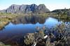 IMG_6711 (TassieJohn) Tags: tasmania australia cradlemountainlakestclairnationalpark fagus mountains fungi lakes tarns