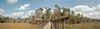 Vanishing Boardwalk (macromary) Tags: 50mm summicron leicaflexsl leica leitz leicaflex slr primelens vintage camera manual film 35mmfilm filmcamera vintagecamera vintagelens oldglass mechanicalcamera analog availablelight analogphoto florida fl color colour colorfilm colourfilm 35mm 35mmcolorfilm citruscounty kodakfilm portra portra160 kodakportra160 120film iso160 crystalriver crystalriverpreservestatepark churchhousehammock cabbagepalm oldflorida realflorida nature landscape floridalandscape estuary coast floridacoast coastalflorida saltmarsh panorama photoshop photomerge stitched hammock coastalhammock