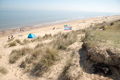 Shelter (Stray Toaster) Tags: wintertononsea winterton norfolk coast beach tycho dog stafy staffordshire bull terrier