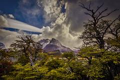Nubes de viento (Mauro Esains) Tags: nubes ruta 23 santa cruz patagonia ñires lengas bosque cielo viento atardecer el chalten parque nacional los glaciares argentina paisaje camioneta toyota camino piedras árboles