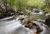 Río de la Miel (Miguel Lorenzo Fotografía) Tags: río ríodelamiel river algeciras cádiz agua water rocas rocks efectoseda lucroit bosque forest largaexposición filtro ndfilter densidadneutra nikond810