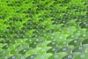 Sea of Green (yushimoto_02 [christian]) Tags: munich münchen munchen muenchen olympia olympic olympiastadion olympicstadium chair chairs green gruen grün architecture architektur repetition repetitive agglomeration stuhlreihe stuhlreihen