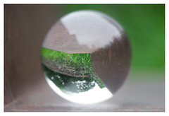 The grass is always greener on the other side (leo.roos) Tags: grass gras lensball crystalball roussel12735 a7 rousselparisanastigmatprojectiontraiteseriepf127mmf35 projectorlens projectionlens day127 dayprime dayprime2018 dyxum challenge prime primes lens lenzen brandpuntsafstand focallength fl darosa leoroos nox 60nx