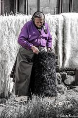 Homemade felt fabrication. Maramures, Romania (Roberto Bendini) Tags: village woman wool felt romania maramures bucovina transylvania church europa europe canon sibiu sighisoara easter brasov
