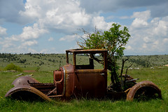 Citroën C6 en épave depuis 1962 (Michel Seguret Thanks for 12,9 M views !!!) Tags: vehicle vehicule voiture car wagen epave carcasse abandoned citroen c6