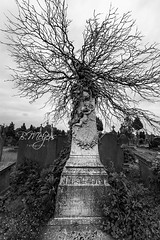 Graveyard 2018 (thanks for 900k views) Tags: graveyard ancient bw bmeijers bertmeijers canon