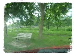Sans elle (Jean-Luc Léopoldi) Tags: parebrise pluie larmes banc vide arbres brouillé triste