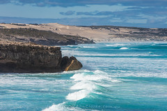 Coastal beauty (Images by Ann Clarke) Tags: nationalpark southaustralia coastal eyrepeninsula ocean surf