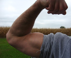 BIG BICEPS (FLEX ROGERS) Tags: massive muscles muscular 18 inch biceps bizeps guns chest pecs wellbuilt welldeveloped shoulders traps delts lats workout ripped shredded abs flex flexing