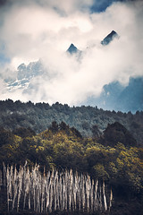 Bhutan: Mystery Peaks of Gasa II. (icarium82) Tags: bhutan canoneos5dmarkiv travel captureone clouds dramaticsky forest gasavalley himalayas layers mountainrange mountains mysterious mystical nature peaks sigma100400mmf563dgoshsm sundaylights