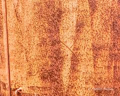 Texture -Metal (augphoto) Tags: augphotoimagery decay door metal old rust rusty texture weathered jenkins kentucky unitedstates
