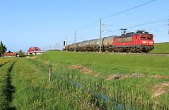DB Cargo 1604 @ Hattemerbroek (Sicco Dierdorp) Tags: db dbc cargo serie1600 unitcargo ketelwagen keteltrein kijfhoek onnen zwolle hanzebook ijsselbrug hanzebrug hanzelijn veluwelijn hattem hattemerbroek wezep amersfoort