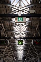Odaiba 台場|東京 Tokyo (里卡豆) Tags: kōtōku tōkyōto 日本 jp 東京都 olympus epl9 25mm f12 pro olympus25mmf12pro odaiba 台場 東京 tokyo
