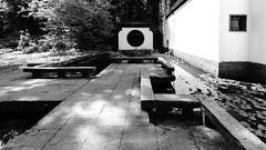 Chinesischer Garten (frankdorgathen) Tags: bochum botanischer garten botanicalgarden rub ruhruniversität ruhruniversity ruhrgebiet ruhrpott alpha6000 schwarzweis schwarzweiss blackandwhite monochrome perspektive perspective wideangle weitwinkel sony1018mm