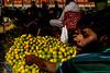 Oranges-DSC_1938 (thomschphotography3) Tags: kolkata fruits fruitmarket calcutta kalkutta oranges men colours colourful india asia streetphotography shadow seller market