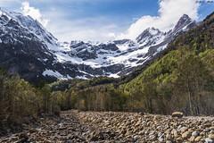 Primavera en el valle, invierno en las cumbres (sostingut) Tags: d750 nikon pirineos montaña primavera nieve ladera cordillera bosque roca verde