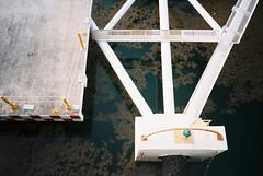 Playa del Carmen (cranjam) Tags: sanmigueldecozumel playadelcarmen cozumel ferry traghetto molo pier ricoh gr1 gr1v film kodak portra160 mexico messico yucatán transcaribe quintanaroo