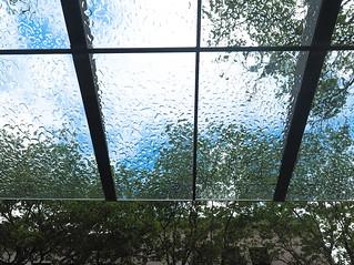 Dry Under Glass