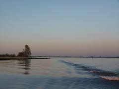 River Elbe - sunset (achatphoenix) Tags: sunset sunsetglow elbe ferry glückstadtwischhafen water wasser sun coucherdusoleil aqua