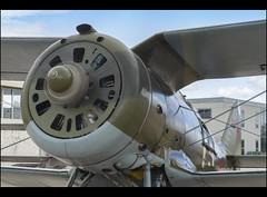 истребитель и-153 чайка II (Conrad Miquel Antich) Tags: fundació fundacióparcaeronàuticdecatalunya fundaciópac sabadell aeroport
