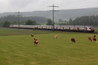 SBB Lokomotive Re 460 065 - 6 mit Taufname Rotsee mit Werbung COOP ( Hersteller SLM Nr. 5542 - ABB - IB 1993 - Werbelokomotive seit 030417 ) zwischen Gümligen und Rubigen im Kanton Bern der Schweiz
