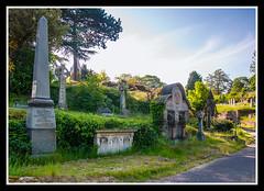 Rock Cemetery 2 (veggiesosage) Tags: nottingham aficionados gx20 rockcemetery churchcemetery cemetery graveyard tamronaf1750mmf28xrdiiild