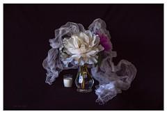 Beauty and glass of milk (Krasne oci) Tags: stilllife flowerart flowers spring onblack peony evabartos fineart artphotography photoart milk classic bouquet love beautiful romance