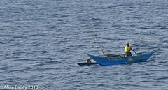 Paddling Home (MWBee) Tags: srilanka fisherman fishingboat indianocean nikon d750 mwbee water boat man