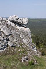Podlesice Jura wspinanie (1)