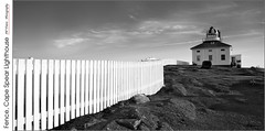 Fence, Cape Spear Lighthouse (jwvraets) Tags: capespear stjohn's newfoundland lighthouse fence eastcoast monochrome blackandwhitebw panorama opensource rawtherapee gimp nikon d7100 nikkor18105mmvr