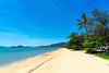 Palm Cove (Joerg1975) Tags: alpha australia australien beach bildinhalt cairns drausen ilce7m2 landscape landschaft lens linse natur objective objektiv ort palmcove queensland reisen sel24240 sand sonstiges sony strand copyrightprotected австралия オーストラリア 澳大利亚 f80 sonyilce7m2