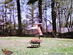 WGI_3207 (scottmcon) Tags: mama bear birdfeeder takedown may 2 2018 mother two cubs solor last years august yearling april 27 separate days